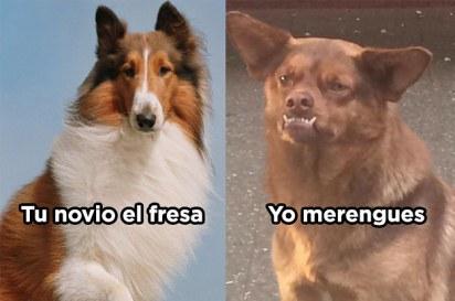 memechilaquil.jpg